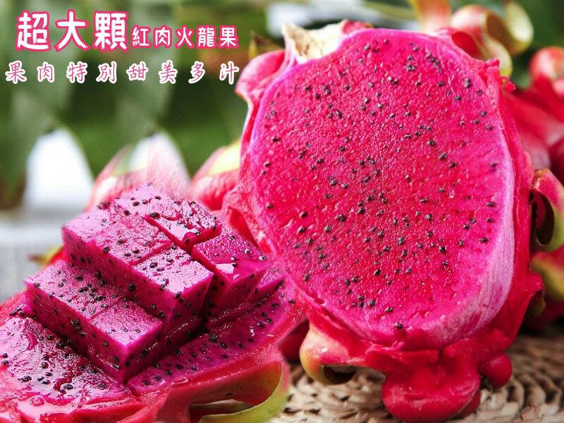 【坤田水果】『巨無霸』紅肉火龍果 (單箱10斤 6-8顆)