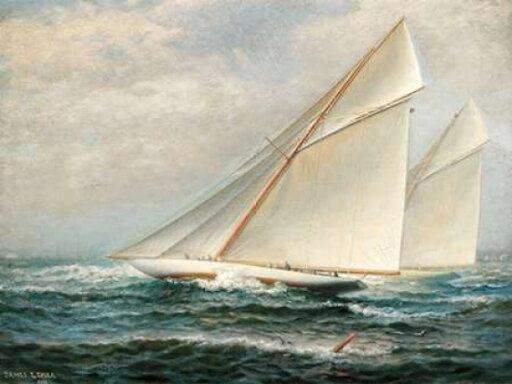 Americas Cup Racing Rolled Canvas Art - James Gale Tyler (11 x 14) 81fa9b95068afe60b6bd4dd3c6087760