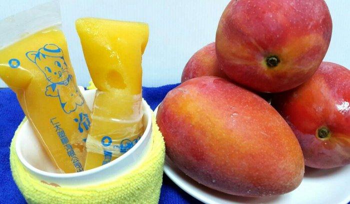 [鼎葉津]純手工製古早味百分百水果凍凍冰1支【芒果】  低溫冷凍滿480元免運費
