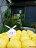 山東姥姥【手工南瓜饅頭115g /  一包6入】季節南瓜入料,善用食材本味,不添加一滴水,完整呈現南瓜綿密,純手工製作100%不添加防腐劑、泡打粉和人工色素★ 6