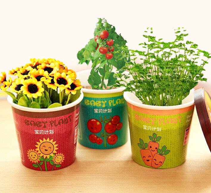 【省錢博士】創意微景觀迷你可愛盆栽 / 辦公室桌面生態果蔬植物種子 39元