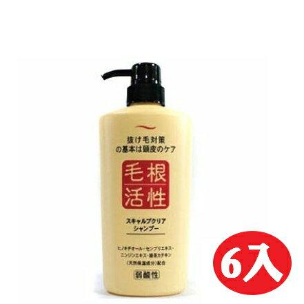 【晨光】日本製 毛根活性健康頭皮洗髮精550ml (101247)-6入【現貨】