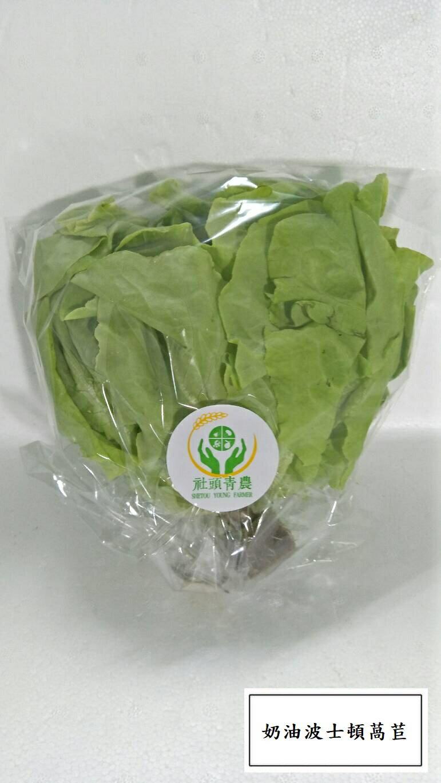 奶油萵苣 (包 / 400G/份)
