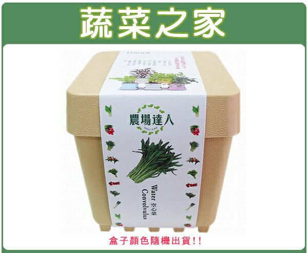 【蔬菜之家004-D06】iPlant小農場系列-空心菜