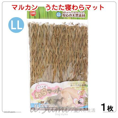 《日本Marukan》兔用專用牧草踏墊/可睡可吃可安撫/籠內牧草兔墊ML-110