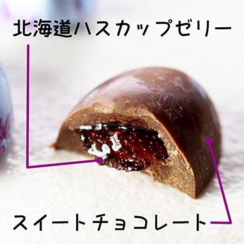 【KCC】北海道藍靛果夾心巧克力20顆入 巧克力禮盒 160g Hokkaido Haskap Chocolate 日本進口零食 3.18-4 / 7店休 暫停出貨 4