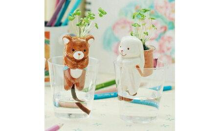 療癒熱賣可愛動物尾巴吸水造型盆栽(隨機出貨)1