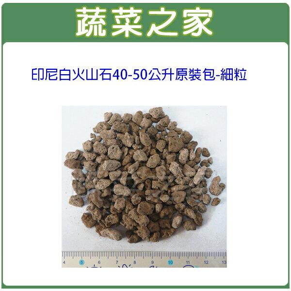 ~蔬菜之家001~A145~印尼白火山石40~50公升 包~細粒