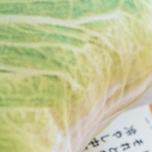 日雜風格 小白菜抱枕 花色獨特 觸感扎實 3