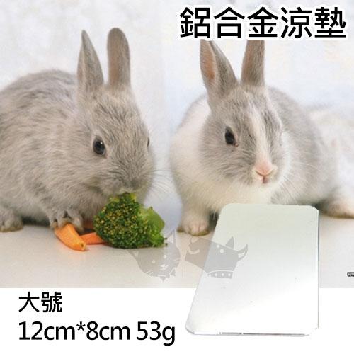 《story》小動物專用超合金鋁涼墊 / 小動物適用 / 夏季涼墊