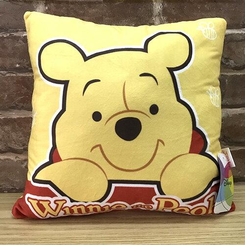 【真愛日本】17050800016 四方抱枕-維尼趴臉 迪士尼 小熊維尼 POOH 靠枕 抱枕 方枕