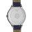 TISSOT 天梭 T1032101601700 BELLA ORA 皮帶石英女腕錶 38mm 6