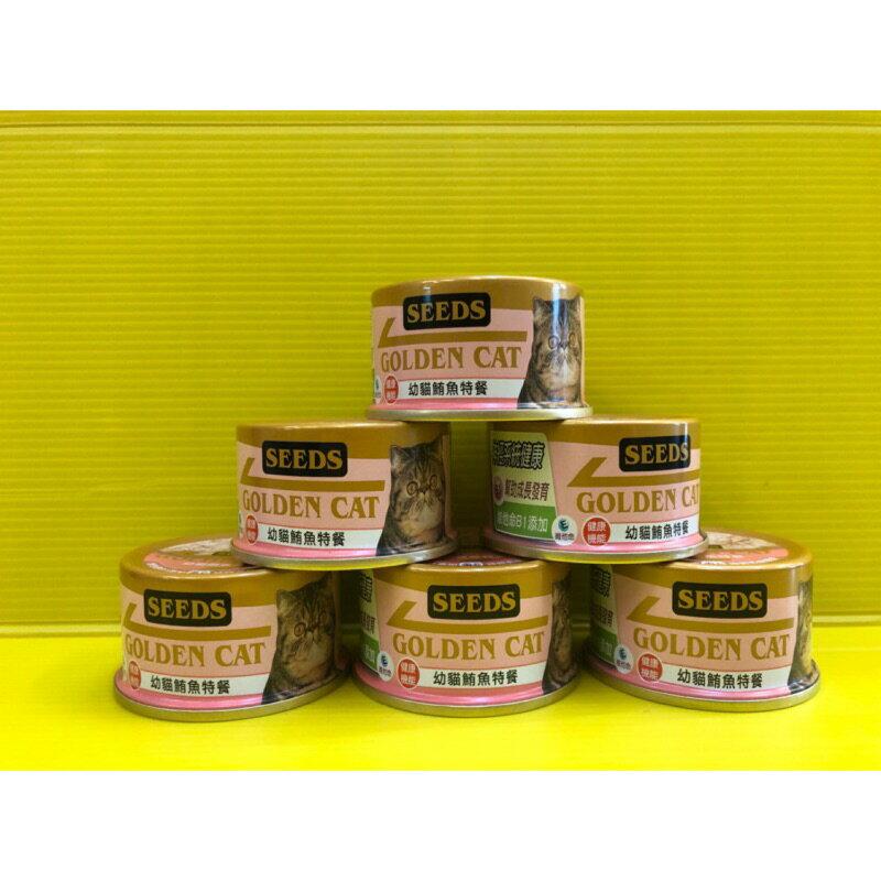 四寶的店n白身鮪魚幼貓特餐小金罐80g Seeds 惜時GOLDEN CAT健康機能特級金貓罐/貓罐頭/貓餐罐