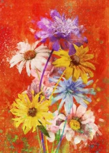 Vibrant Posies 2 Poster Print by Ken Roko (10 x 14) c3148a5cb780d03cc692740a4032ef94