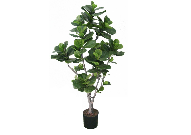 ★超低價★造型琴葉榕 / 塑膠樹幹人造樹 空間 景觀 佈置 造景