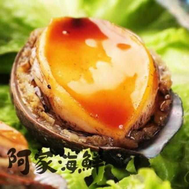熟凍帶殼小鮑魚 1kg±10%/盒(12顆、18顆)