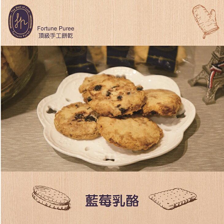 【Fortune Puree】藍莓乳酪 (每包100g)