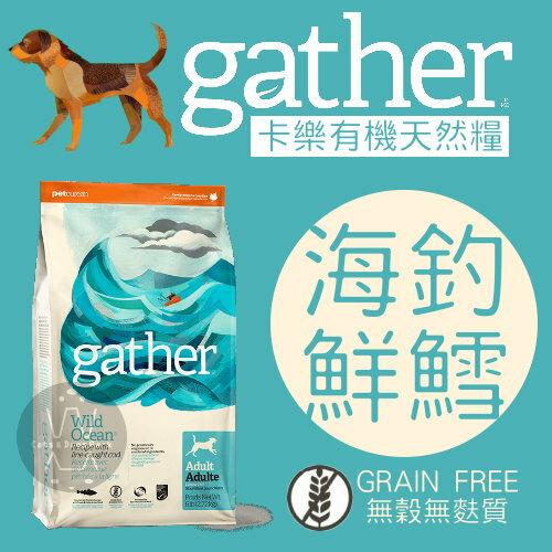 gather卡樂〔海釣鮮鱈配方,成犬糧,6磅〕