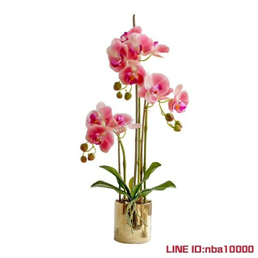 手感保濕蝴蝶蘭仿真花套裝花瓶盆栽假花裝飾花客廳擺設花藝3杈花 JD CY潮流站 4