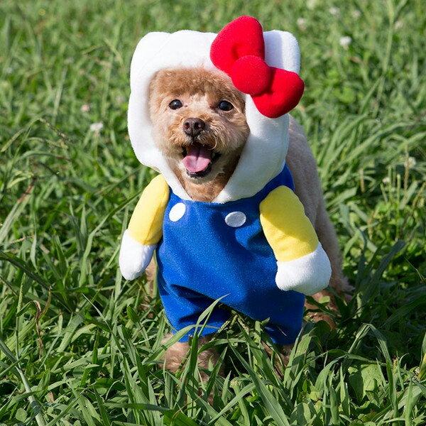 【真愛日本】15091600039寵物小套裝S-藍衣紅結 三麗鷗 Hello Kitty 凱蒂貓 狗衣服 小套裝 正品
