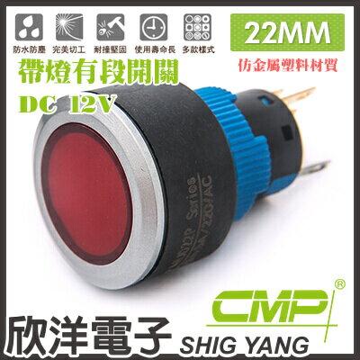 ~ 欣洋電子 ~ 22mm仿金屬塑料帶燈有段開關DC12V  P2202B~12V 藍、綠