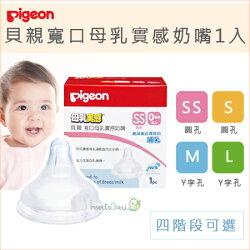 ✿蟲寶寶✿【日本Pigeon】貝親寬口母乳實感奶嘴 四階段可選SS/S/M/L