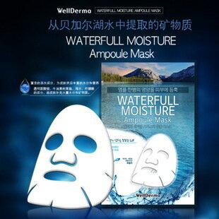 韓國WellDream 夢蝸貝加爾湖水庫面膜(5入)