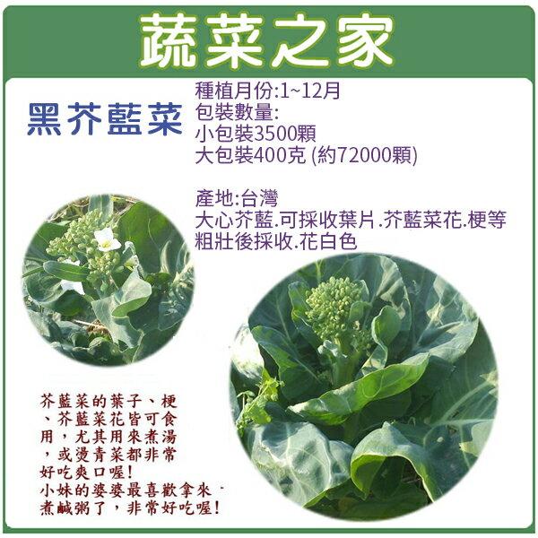 【蔬菜之家】黑芥藍菜種子(有兩種規格可選)