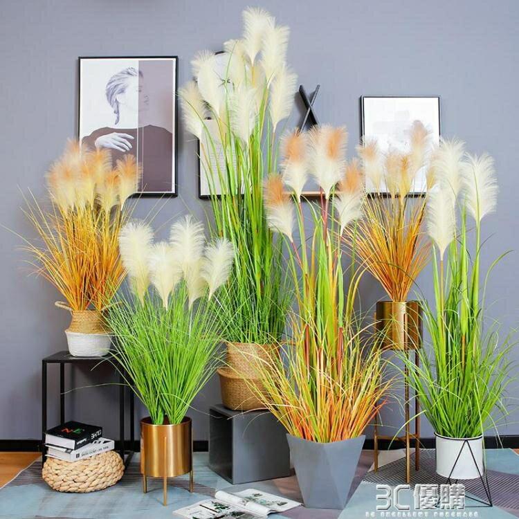 仿真植物北歐ins風蘆葦草客廳盆栽擺件網紅假綠植大型落地花裝飾