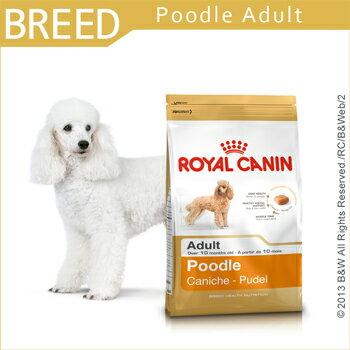 寵物 狗飼料 ROYAL CANIN法國皇家貴賓成犬PRP30