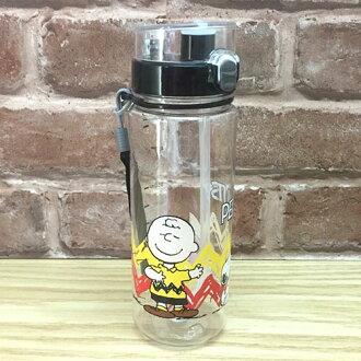 【真愛日本】17042500016 SN吸管壺600cc-與查理布朗 史奴比 史努比 SNOOPY 冷水壺 茶壺 水瓶