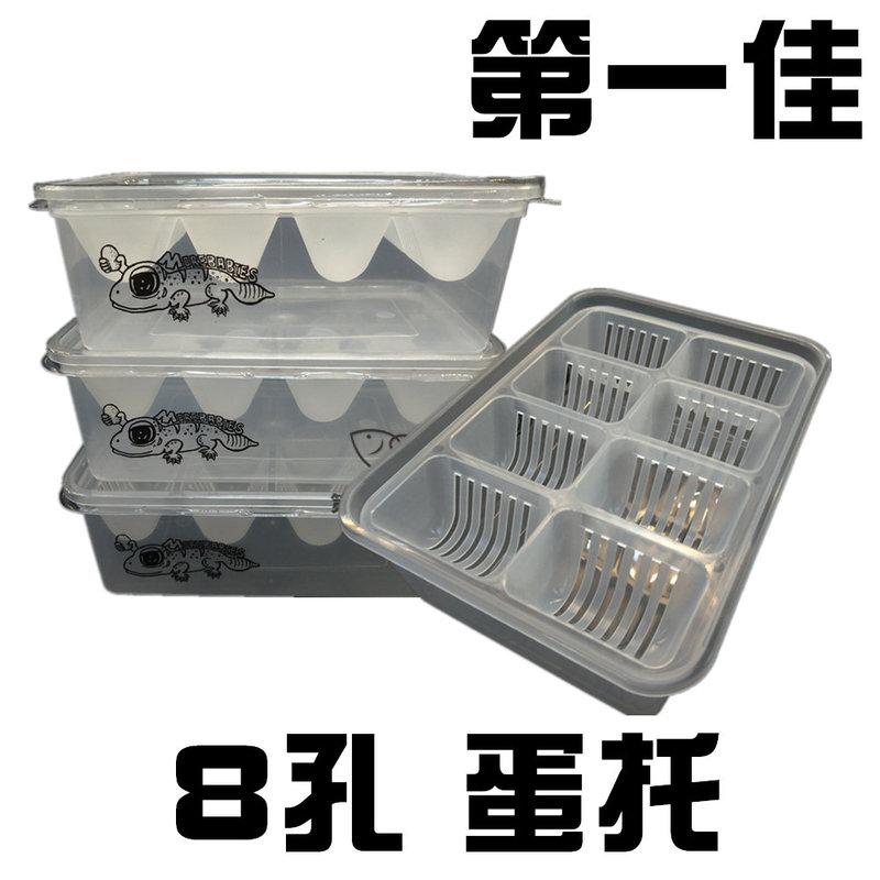 [第一佳水族寵物] 精緻蛋托 8孔 爬蟲孵蛋盒(飼料盆 飼養箱 爬箱)兩棲 守宮 蜥蜴 水龜 小型動物