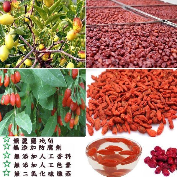 紅棗枸杞茶/80公克(10包入)