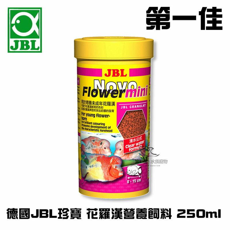 [第一佳水族寵物] 德國JBL珍寶 Novo Flower mini(年幼)花羅漢營養飼料 250ml