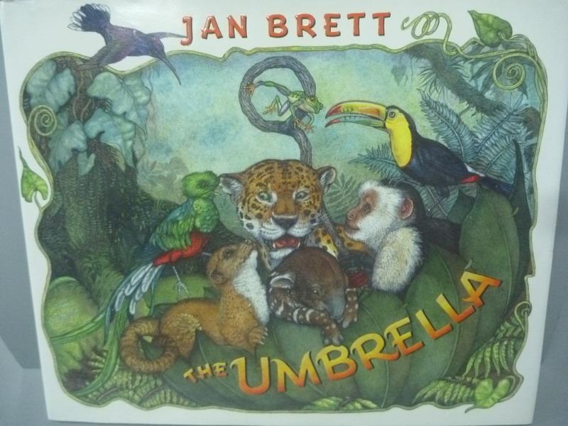 【書寶二手書T1/少年童書_YDJ】The Umbrella_Brett, Jan