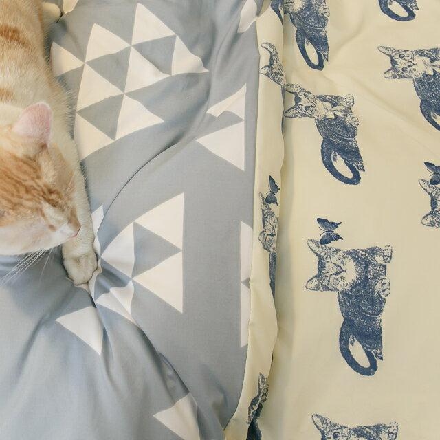 Blue cat 藍貓【床包藍底白三角形】單人/雙人熱賣組   舒適磨毛布 台灣製造 4