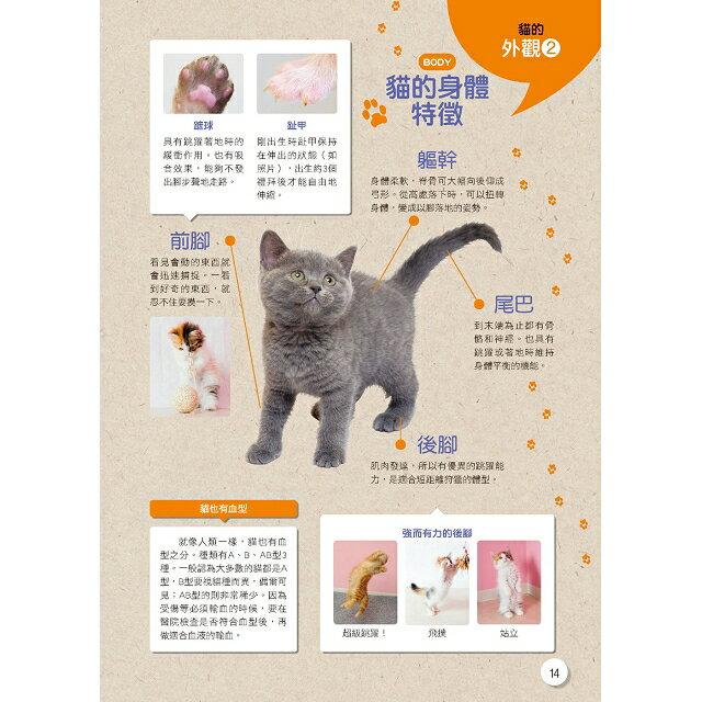 新手養貓必備書  暢銷版 8
