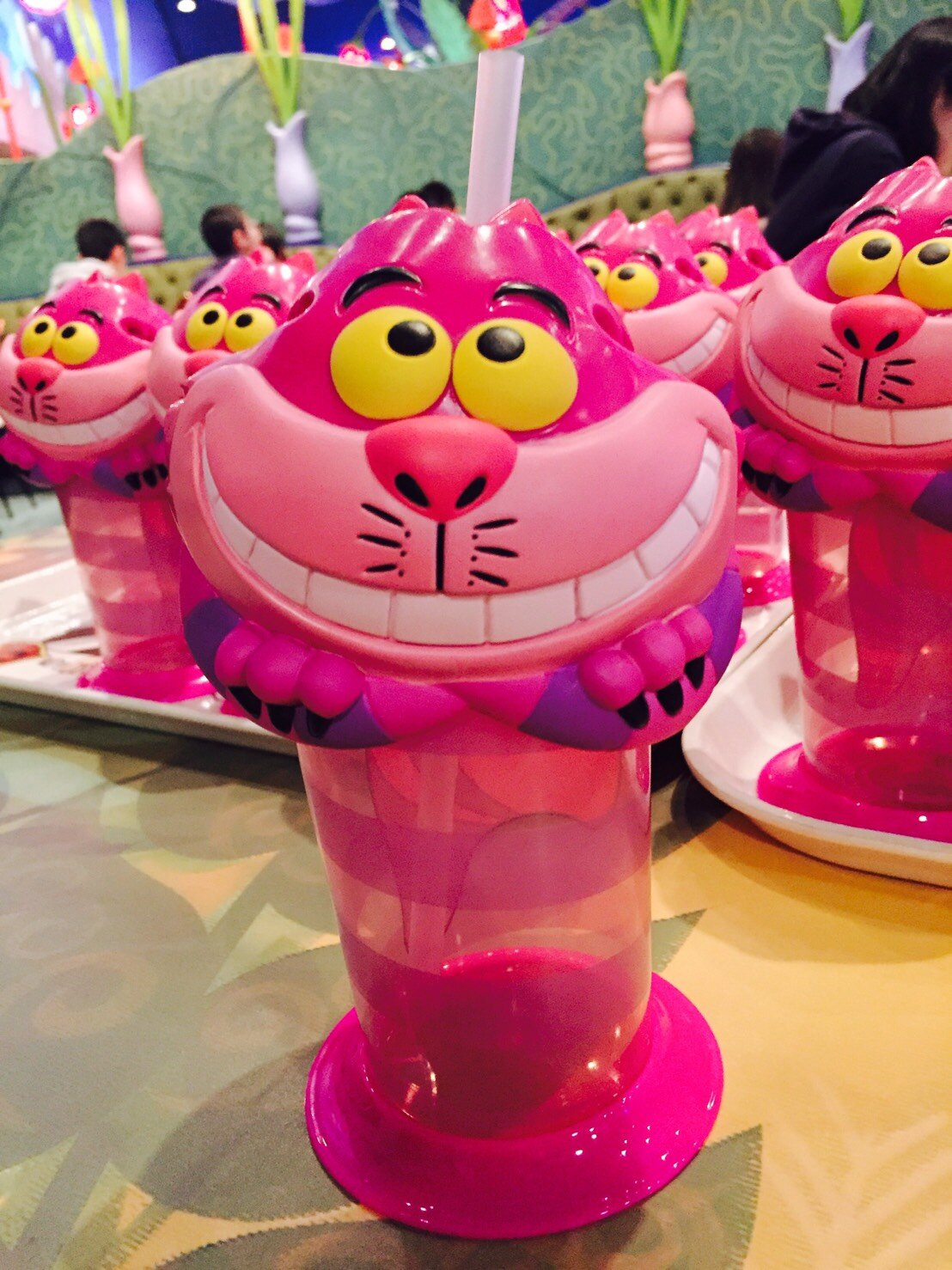 【真愛日本】 17041700063樂園限定吸管冷水杯壺-妙妙貓 日本迪士尼 樂園限定 水壺 日本帶回 限定款