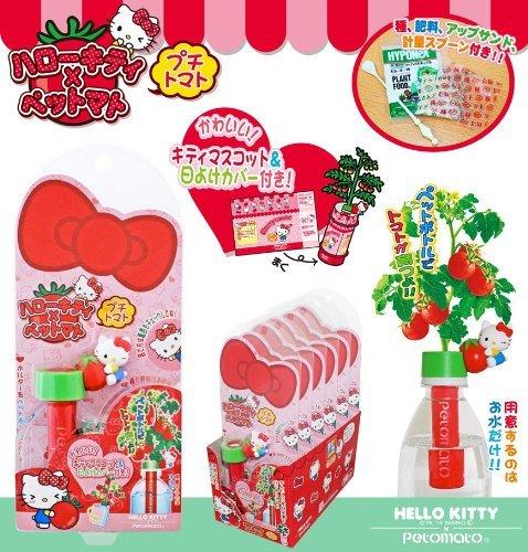 X射線【C010565】Hello Kitty 番茄小植栽,桌上盆栽/樂活植栽/花束/園藝/