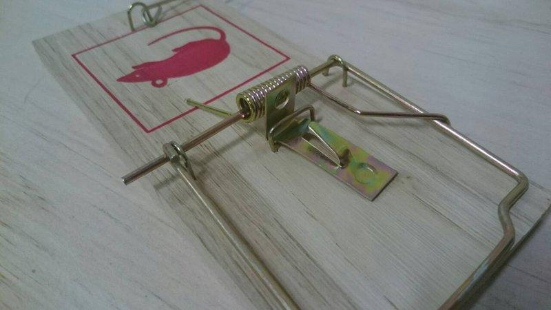 【八八八】e網購~【老鼠夾板09-60-1】捕鼠器 捕鼠夾 老鼠板 捕鼠器 老鼠夾 夾鼠板 捕鼠板 陷阱夾 抓老鼠