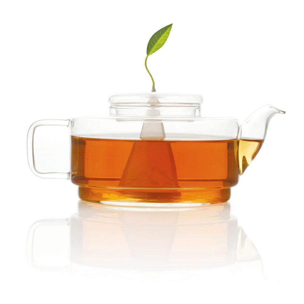 =OUTLET商品= Tea Forte SONTU精緻玻璃茶壺 SONTU TEA POT 1