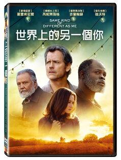 世界上的另一個你DVD