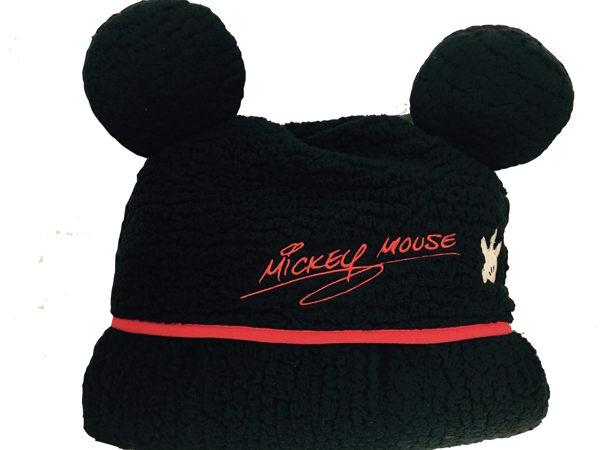 日本東京迪士尼限定 米奇 米妮 維尼熊 三眼怪 毛怪 披肩毯 披肩毛毯