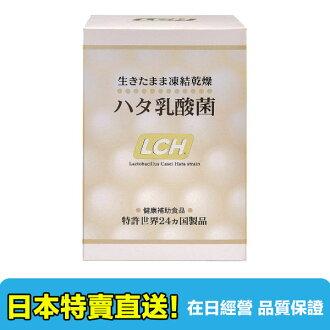 【海洋傳奇】【日本空運免運】日本 LCH 乳酸菌 2G*30包 藝人曾菀婷推薦