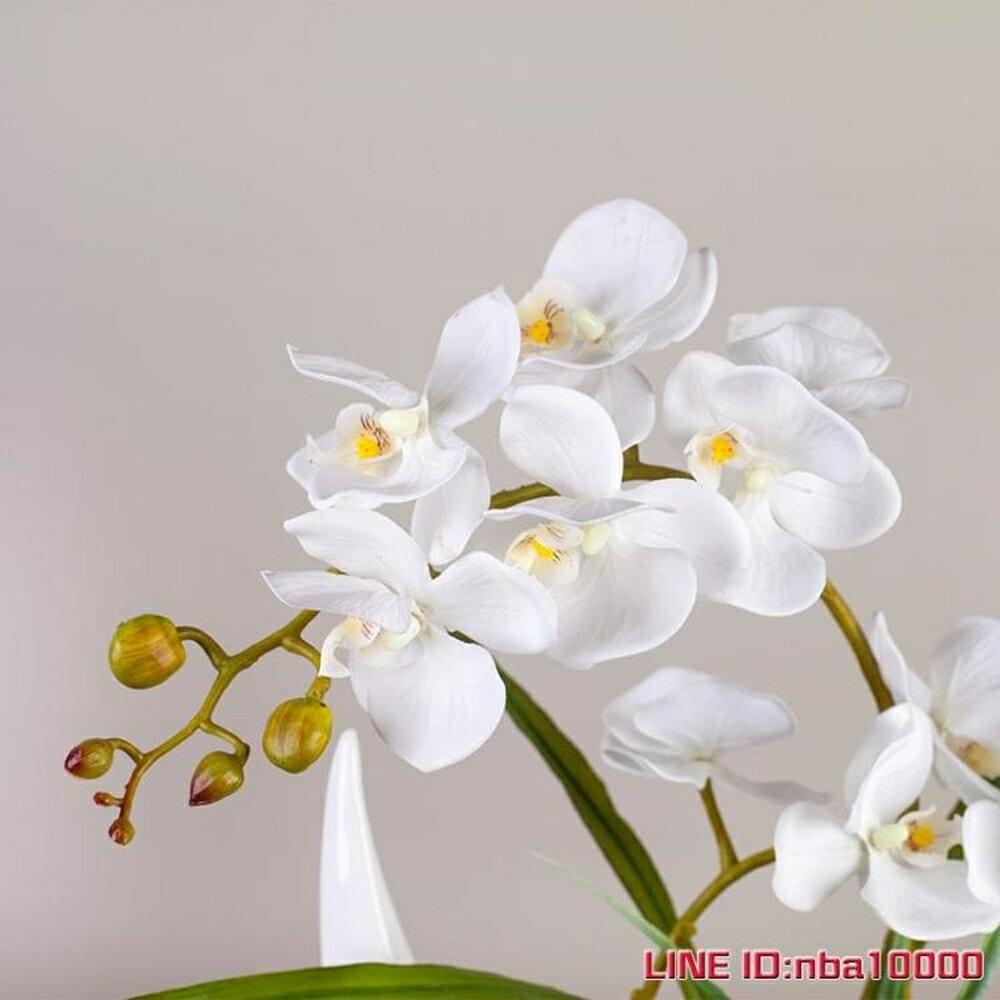 仿真蝴蝶蘭套裝 假花絹花裝飾花蘭花客廳擺設花藝 花瓶盆栽擺件 JD CY潮流站 1