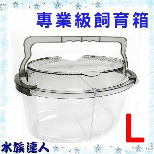 推薦【水族達人】【飼育箱】《專業級飼育箱 L O-43》台灣製造 飼育盒 甲蟲 鍬形蟲 獨角仙 烏龜 蟹 寵物鼠 昆蟲