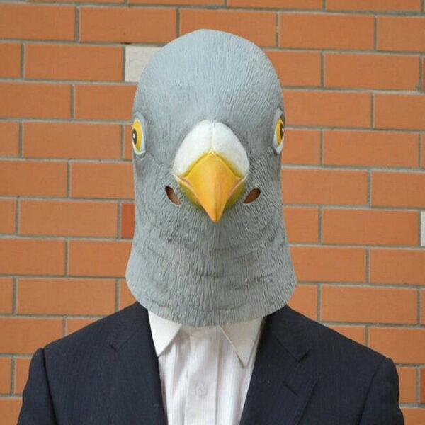 塔克玩具百貨:鳥人面具萬聖節鴿子賽鴿鳥人憤怒鳥面具眼罩面罩cosplay派對整人變裝【塔克】