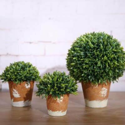 ~模擬草球含盆盆景~3號~寬22~高27cm~1盆  組~長青樹橄欖樹家居飾品客廳陽臺裝飾