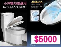 尺寸馬桶 TOTO 免治 靜音馬桶蓋 安全 清潔