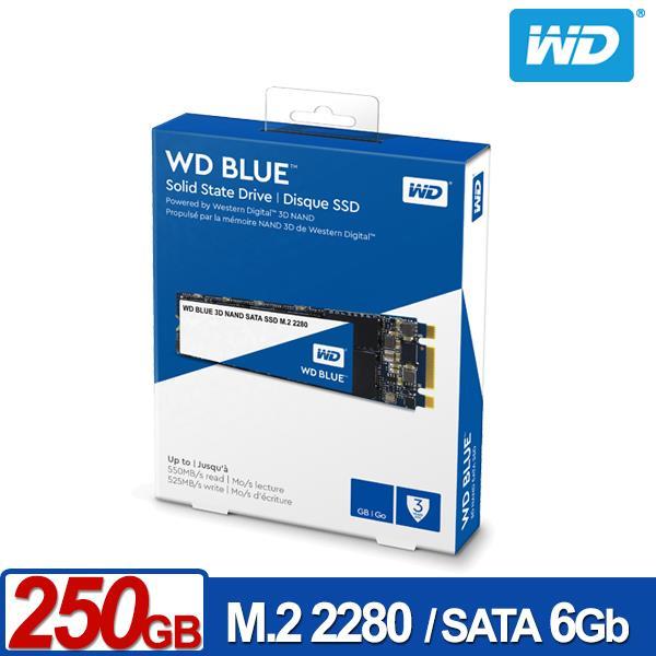 WDSSD250GBM.2SATA3DNAND固態硬碟藍標**五年保固**